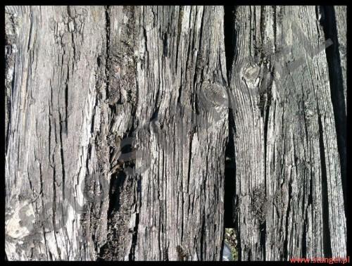 """""""zmęczone życiem stare drzwi""""  04.2012 foto T. Stangel 2012"""